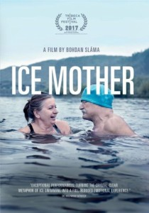 Ice Mother poster